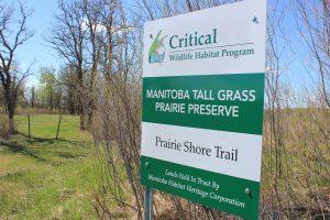 Prairie Shore Trail