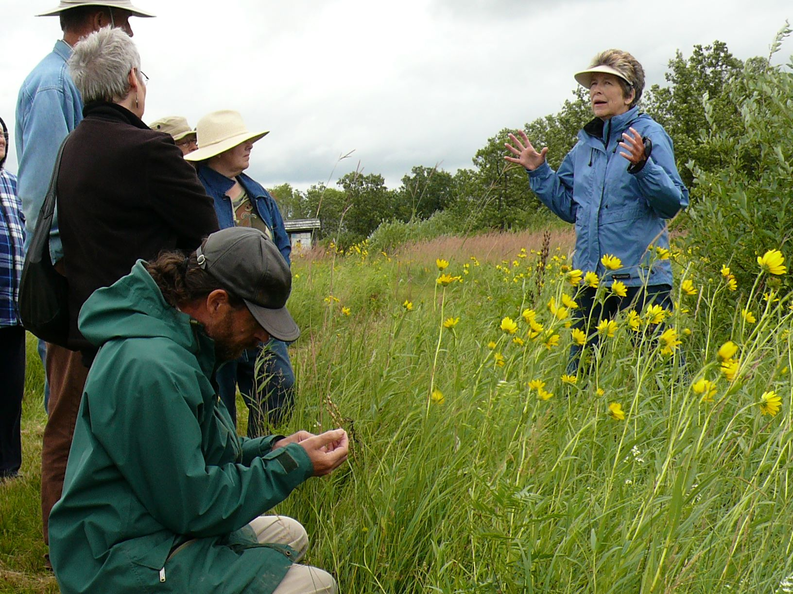 guided walk with naturalist in tall grass prairie preserve